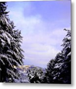 Pretty  And  Cold Metal Print