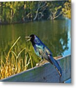 Pretty Bird At A Sunrise Metal Print