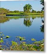 Tranquil Lake In Florida Metal Print