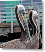 Pretty Pair Metal Print