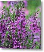 Pretty Pink And Purple Flowers Metal Print