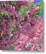 Pretty Pink Blossoms Metal Print