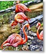 Pretty Pink Flamingos Metal Print
