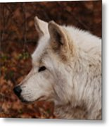 Pretty Profile Metal Print
