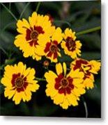 Pretty Yellow Flowers Metal Print