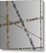 Prickly Series 6-10-2015 #3 Metal Print