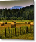 Priest Lake Hay Bales II Metal Print