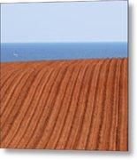 Prince Edward Island Fields 5645 Metal Print
