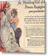 Princess Rospigliosi Ephemera Vintage Metal Print