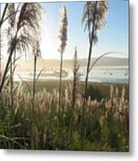 Princeton Harbor. California Metal Print