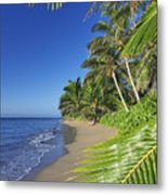 Private Molokai Beach Metal Print