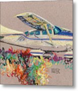 Private Plane Metal Print