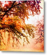 Promise Of A Brighter Future Metal Print