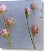Promise Of New Life Metal Print