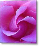 Propeller Of Rose Metal Print