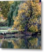 Prosser - Autumn Reflection With Geese Metal Print