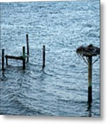 Protected Osprey Nest Metal Print