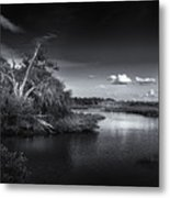 Protected Wetland Metal Print