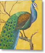 Proud As A Peacock Metal Print