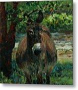 Provence Donkey Metal Print