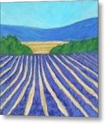 Provence Lavender Field Metal Print