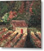Provence Vineyard Metal Print