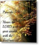 Proverbs115 Metal Print