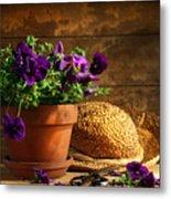 Pruning Purple Pansies Metal Print