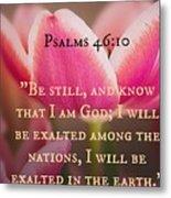 Psalms104 Metal Print