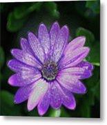 Psychedelic Purple Petals  Metal Print
