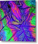 Psychodelic Tree Frog Metal Print