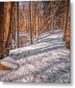Pulled Into The Woods Metal Print