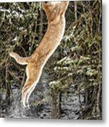 Puma High Jump Metal Print