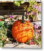 Pumpkin And Flowers Metal Print