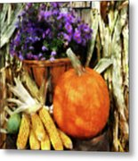 Pumpkin Corn And Asters Metal Print