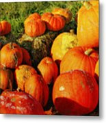 Pumpkin Meeting Metal Print