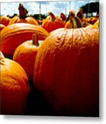 Pumpkin Patch Piles Metal Print
