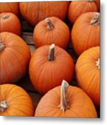 Pumpkin Time Metal Print