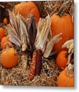 Pumpkins And Corn Metal Print