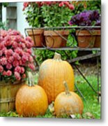 Pumpkins And Flowers Metal Print