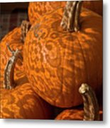 Pumpkins And Lace Shadows Metal Print