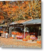 Pumpkins For Sale Metal Print