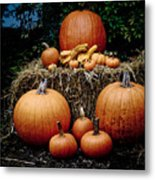 Pumpkins In The Dark Metal Print