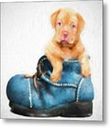 Pup In A Shoe Metal Print