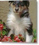 Pup In The Flowers Metal Print