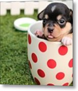 Puppy Cup Metal Print