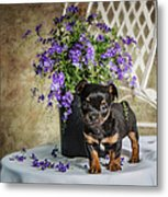 Puppy Dog With Flowers Metal Print