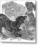 Puppy Love - Doberman Pinscher Pup Metal Print