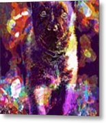 Puppy Sweet Cute Dog Young Animal  Metal Print