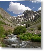 Pure Mountain Beauty Metal Print